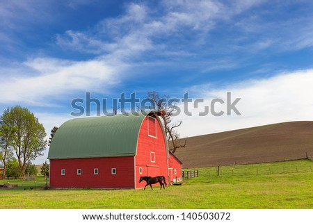 Red Barn and Horse - stock photo