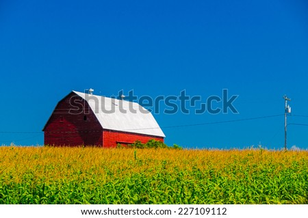 Red barn behind a cornfield in upstate New York, USA - stock photo