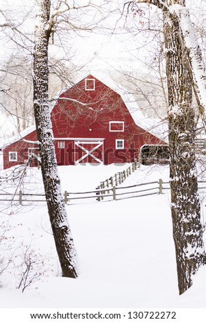 Red barn in snow on lamb farm. - stock photo