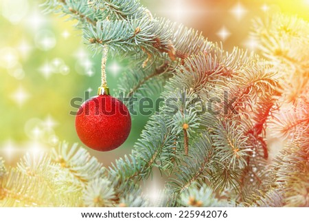 Red bauble on twig of Christmas tree - stock photo