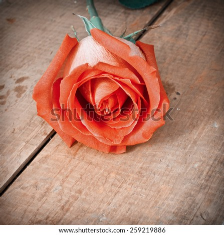 Red beautiful rose on the old wooden background - stock photo