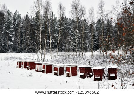 Red bee hives in a row at wintertime