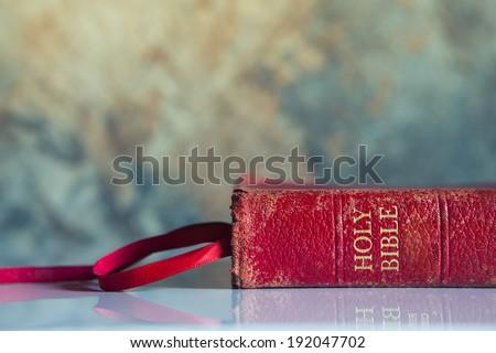 RED BILE - Horizontal - stock photo