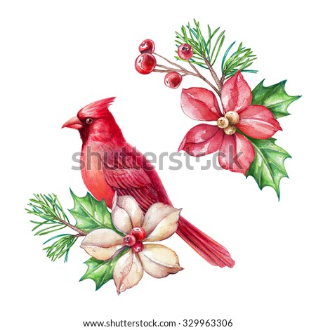 red bird, poinsettia flower, Christmas holiday ornaments, design elements, clip art, watercolor illustration isolated on white background - stock photo