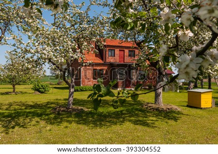 Red brick house and yellow beehive in the blooming apple tree garden