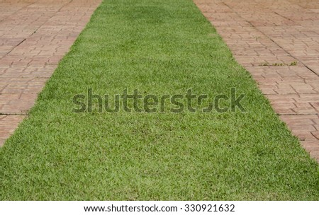 red brick walkway in the garden with green grass