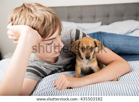 Red Brown Terrier Mix Puppy Sitting on Striped Bed Protected by Human
