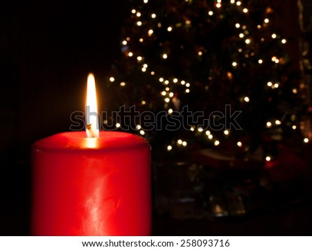 Red candle with a flame with a Christmas tree behind - stock photo