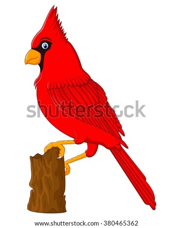 Red Cardinal sitting on a tree branch - stock photo