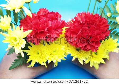 Red carnation and yellow flowers in woman hand with blue background. - stock photo