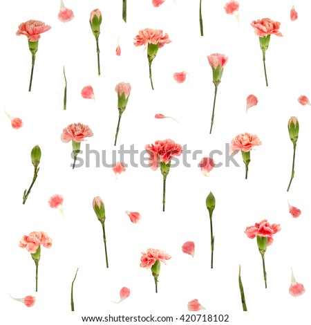 Red carnation floral pattern isolated on white background