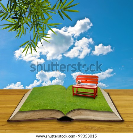 Red chair on grass in the open book, Reading concept