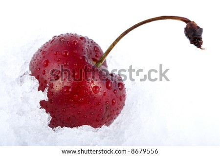 Red cherry in snow - stock photo