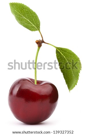 Red Cherry Isolated On White Background - stock photo