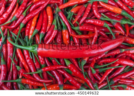 red chili or chilli cayenne pepper - stock photo