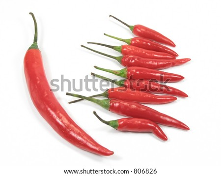 Red chili pepper standout in isolated background