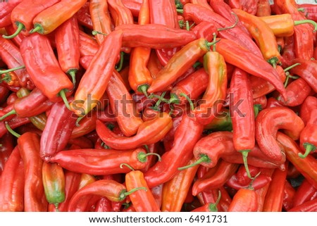 Red chilies - stock photo