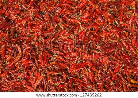 Red Chilli Pods are lying for drying in front of a house in the sun on the tropical island Sri Lanka in the Indian Ocean - stock photo