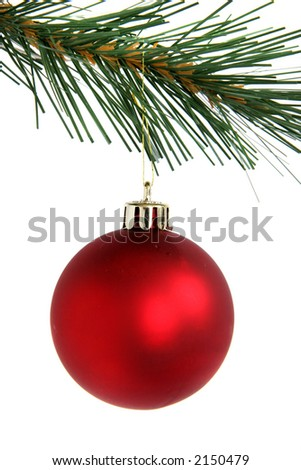 Red christmas ball hanging from branch
