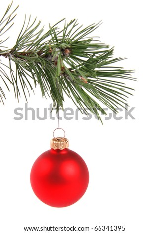 red christmas ball hanging on pine tree branch
