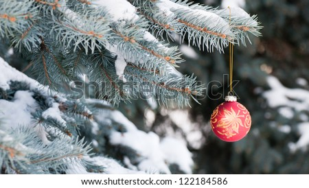 Red Christmas ball with gold pattern on blue spruce - stock photo
