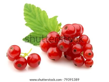 Red Currant close up - stock photo