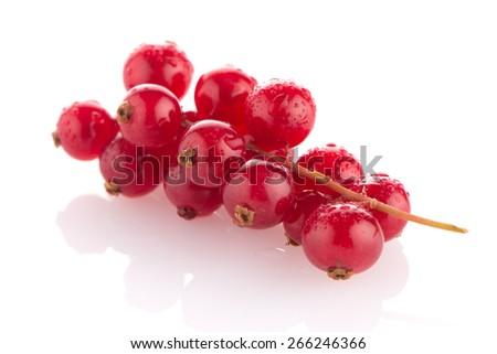 Red Currant close up on white background. - stock photo