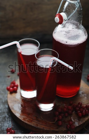 Red currant cocktail with berries - stock photo