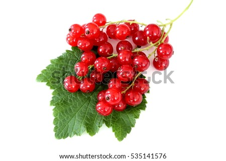 red currant fruits isolated on a white background