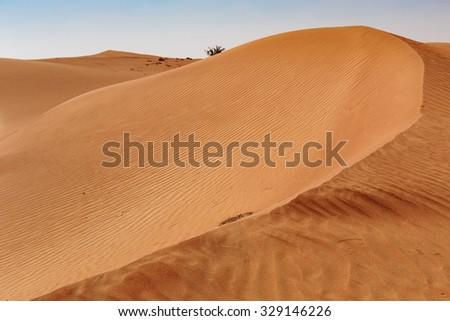 Red desert sand in Dubai - stock photo