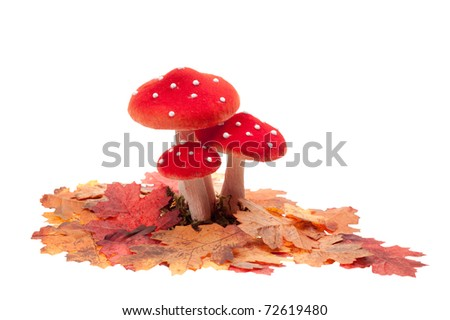 red dotted decoration mushrooms with leaves  isolated on a white background - stock photo