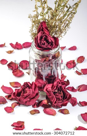 red dried roses in and out of glass vase  isolated on white background - stock photo