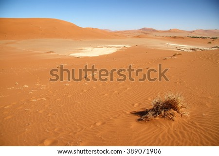 Red dunes and salt pan in Sossusvlei, Namib Naukluft National Park, Namib desert, Namibia. - stock photo