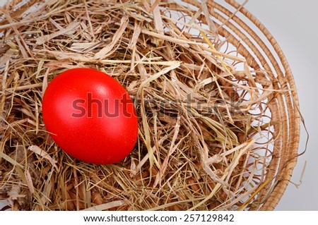 red easter egg in straw nest  isolated