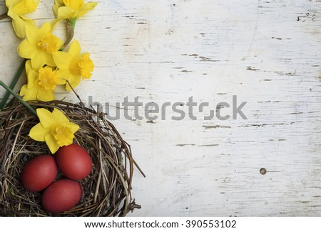 Red easter eggs in bird nest on white wooden background - stock photo