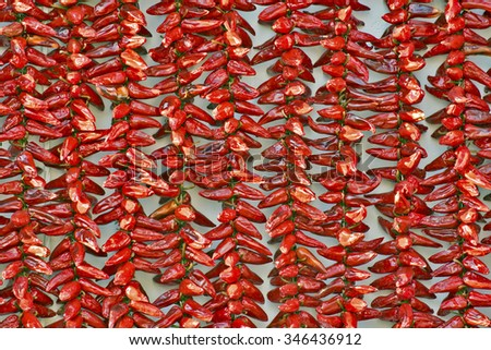 Red Espelette peppers drying in the wall of a house in Espelette village, Basque province of Labourd, France, Atlantic Pyrenees, Aquitaine  - stock photo