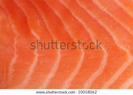 Red fish background