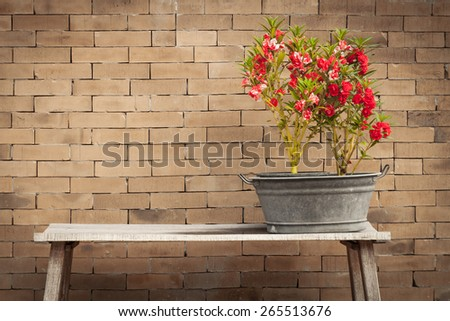 red flower and brick wall background,vintage style - stock photo