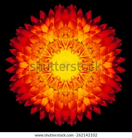 Red Flower Mandala. Kaleidoscopic design Isolated on Black Background. Mirrored pattern