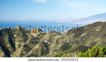 Red flower with sky in the Teide National Park, Canary Island - stock photo