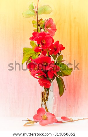 Red flowers in small glass