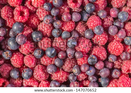 Red fresh raspberry background