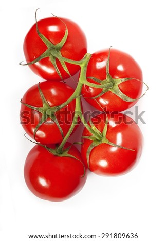 Red fresh tomatoes on a green branch in drops of water on a white background isolation. top view