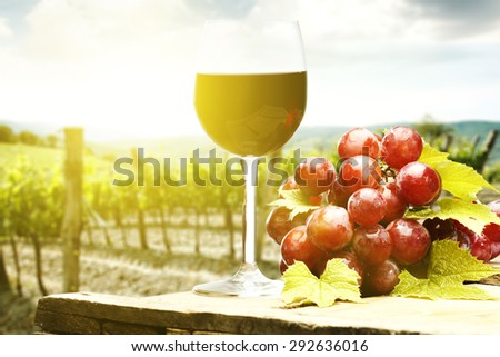 red fruits and wine