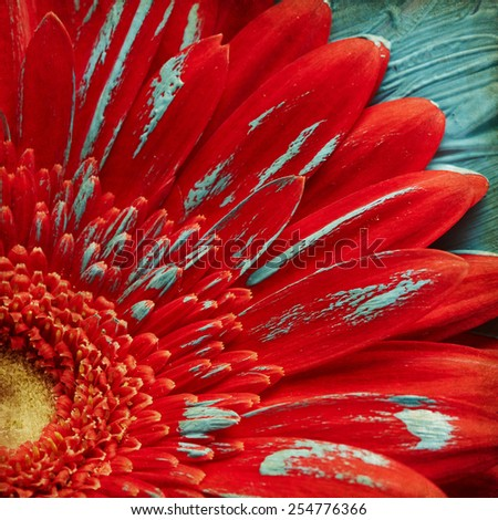 Red gerber flower in blue paint - stock photo