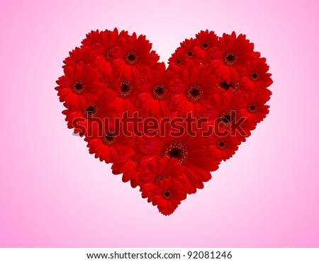 Red gerberas flower create heart picture on white background.