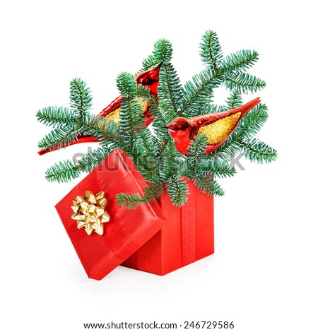Red gift box with fir tree branch, two birds and gold bow ribbon isolated on white background. Christmas themes - stock photo