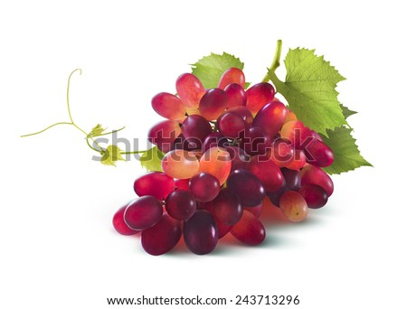 Red grapes bunch with leaf isolated on white background as package design element - stock photo