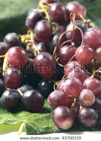 red grapes for wine - stock photo