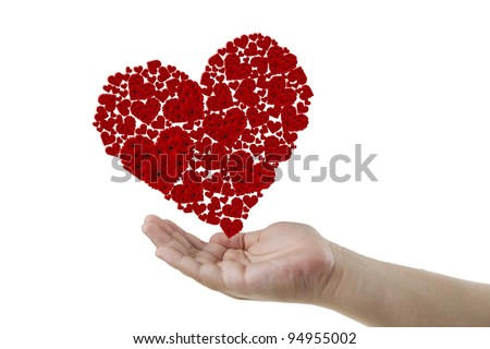 Red heart create form gerberas on a hand. - stock photo
